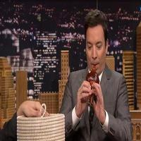 VIDEO: Jimmy Fallon Snake Charms a Cobra on TONIGHT SHOW