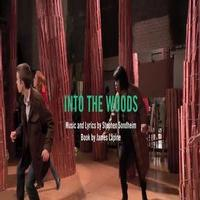 STAGE TUBE: First Look- Theatre Latte Da's INTO THE WOODS