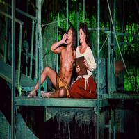 BWW TV: Watch Highlights from TARZAN at the Muny with  Nicholas Rodriguez, Kate Rockwell & More!