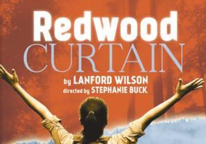 Purple Rose Theatre Company Offers Half-Price Weeknights at REDWOOD CURTAIN thru 3/13