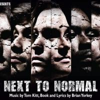 BWW Reviews: NEXT TO NORMAL Electrifies Vermillion