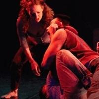 BWW Reviews: Tiffany Mills' BERRIES AND BULLS and THE FEAST