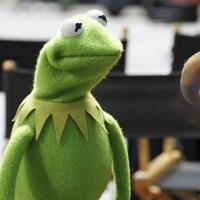 ABC Greenlights 8 New Series Including Shonda Rhimes Drama & THE MUPPETS!