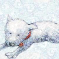 Brightline Interactive Launches Snowflake e-Book