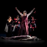 World Premiere of Soledad Barrio and Noche Flamenca's ANTIGONA Set for UW World Series This Weekend