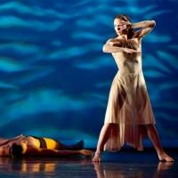 Photo Flash: Preview ON DISTANT SHORES, BOLERO and More in RIOULT Dance NY's 2013-14 Season