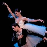 Houston Ballet Dancers Make Guest Appearances With The Australian Ballet