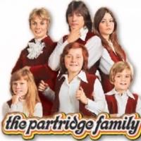 PARTRIDGE FAMILY Star Suzanne Crough Passes Away at 52