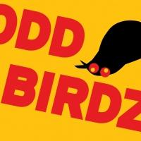BWW Reviews: Tziporela's ODD BIRDZ is Hysterical Sketch Comedy