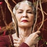 Photo Flash: Ellen Burstyn & Heather Graham Featured in Character Posters for Lifetime's PETALS ON THE WIND