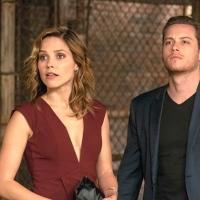 NBC's CHICAGO P.D., 'S.V.U.' Match Premiere Highs