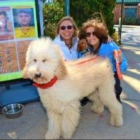 Photo Flash: Boat Rides, Dog Walks and More at Bay Street Theatre's 2nd Annual Steinbeck Festival