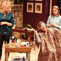 BWW Reviews: CATCO's STEEL MAGNOLIAS More Aluminum Than Titanium