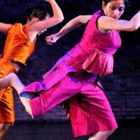 Ananya Dance Theatre to Present BLUE DREAM JOURNEYS at Northern Spark Festival, 6/14-15