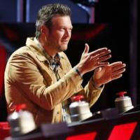Spoiler Alert! Recap and Review: THE VOICE Live Playoffs Night One, 11/10; Full Review!