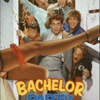 ABC Developing Pilot Based on Tom Hanks' BACHELOR PARTY Film