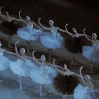 BWW Reviews: The Corps de Ballet Is the Star of the MARIINSKY BALLET's 'Swan Lake' at BAM