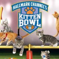 Hallmark Channel's KITTEN BOWL II Draws 1.3 Million Viewers