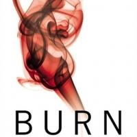 Top Reads: Maya Banks' BURN Tops New York Times Best Seller List, Week Ending 8/25