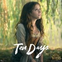 New INTO THE WOODS Social Media Image Marking 10 Days Until Release