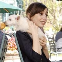 But, Wait! What's On TV Tonight? Thursday, Oct. 2nd: Cristin Milioti Lives!