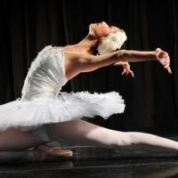 Andrea Maciel De Faria and Brooklyn Mack to Appear with Shreveport's Metropolitan Ballet