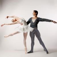 The Washington Ballet Announces Its 2014-2015 Performance Season, Which Includes SLEEPY HOLLOW, SWAN LAKE, and More