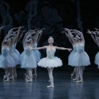 New York City Ballet to Open Season with SWAN LAKE; Tickets on Sale Now
