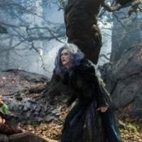 BWW Personality Quiz: Which Wish from INTO THE WOODS Best Describes You?