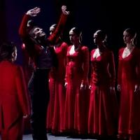 BWW Reviews: Metáfora: Ballet Flamenco de Andalucía at City Center