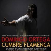 Vida Flamenca Productions Presents Flamenco Dancer Domingo Ortega