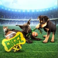 Animal Planet's PUPPY BOWL XI is No. 1 Cable Telecast Among Major Demos
