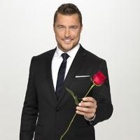 Breaking: THE BACHELOR's Chris Soules Joins 20th Season of DANCING WITH THE STARS
