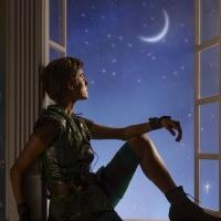 First Look: All-New Photo of Allison Williams in NBC's PETER PAN LIVE!