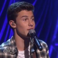 VIDEO: Shawn Mendes Performs 'Life of the Party'; Surprises Fans on ELLEN