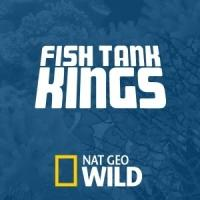 Nat Geo WILD Premieres New Season of FISH TANK KINGS Tonight