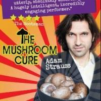 TCL Productions Brings THE MUSHROOM CURE to FringeNYC, Now thru 8/22