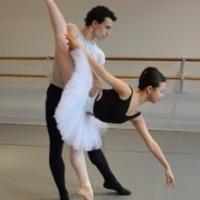 American Repertory Ballet Announces  Princeton Ballet School's Spring Production 2013: SWAN LAKE