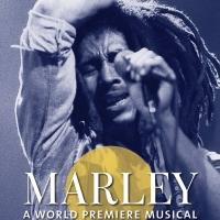 Mitchell Brunings Leads World Premiere Bob Marley Musical, Beginning Tonight at Center Stage