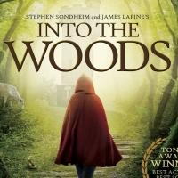 New Cover For INTO THE WOODS Original Broadway Production Blu-ray