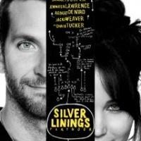 SILVER LININGS PLAYBOOK Tops DVD & Blu-ray Sales & Rentals for Week Ending 5/5
