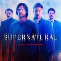 Photo Flash: New SUPERNATURAL Season 10 Poster