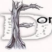 Forgotten Door to Perform at Forever Home Family Picnic & 4K 9 Run, 11/3