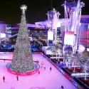 Photo Flash: First Look at Brightman, Manilow & More in L.A. LIVE's HOLIDAY TREE LIGHTING