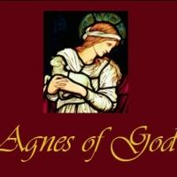 Rev. Lisa 'Lucy' B. Hamilton Set for Talk-Back After Manatee's AGNES OF GOD, 3/8