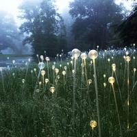 Artist Bruce Munro to Bathe the Atlanta Botanical Garden in Light, 5/2-10/3