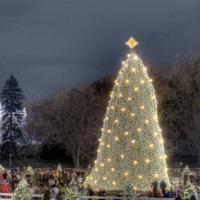 Arturo Sandoval & More Perform at 91ST ANNUAL NATIONAL CHRISTMAS TREE LIGHTING Tonight
