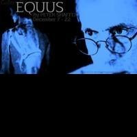 Gallery Players Open EQUUS Tonight