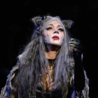 Andrew Lloyd Webber's CATS, Starring Nicole Scherzinger, Opens Tonight in the West End
