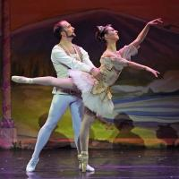 BWW Reviews: The NUTCRACKER  by ARB  in NJ through 12/21, A Holiday Tradition